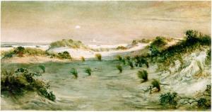 sanddunes